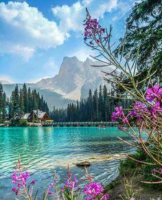 Emerald Lake and Mount Burgess, Yoho National Park, Beautiful British Columbia Beautiful Nature Pictures, Beautiful Nature Wallpaper, Amazing Nature, Nature Photos, Pretty Pictures, Beautiful Landscapes, Beautiful World, Landscape Photography, Nature Photography