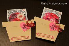 Inexpensive Flower Seeds Valentines  via TheKimSixFix.com