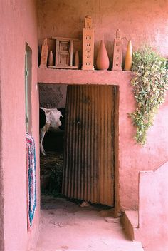 "'Berber House, Atlas Mountains, Morocco' | Fotobes (tobesandjess), on Flickr. ""...The family cow has a room to itself, which is nicely framed by the red earth walls of the house."" #portal #interior #door #house #home #building #facade #painted #stucco #wood #metal #decor #plant #cow #earth #dirt #hay #sticks #white #pink #green #turquoise #blue #brown #black #color #moroccan #design #architecture #berber #atlas #mountains #morocco #north #africa #travel #photography"