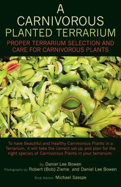A Carnivorous Planted Terrarium