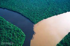 Unión del Orinoco y el Caroní  El río Caroní con sus aguas oscuras producto del contenido de ácidos orgánicos, y el río Orinoco con su gran cantidad de sedimentos de color más bien terroso. Esto es debido a la forma como se maneja la cuenca que principalmente genera sedimentos producto de la erosión que se deriva de la pérdida de la cobertura vegetal.