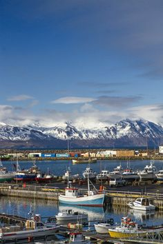 Húsavík, Iceland Places To Travel, Places To Go, Iceland Island, Plan My Trip, Iceland Travel, Travel Goals, Outdoor Life, Beautiful Islands, Homeland