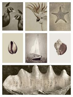 catalogue_prints