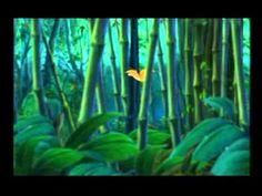 A video based on the book, Stellaluna. Halloween Activities, Holiday Activities, Book Activities, Classroom Fun, Classroom Resources, Online Stories, Magic School Bus, School Videos