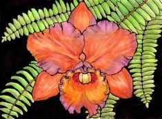 Watercolor drawing of Hawaiian orchids.