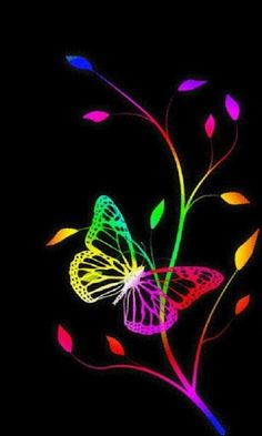 Bike Wallpaper, Cellphone Wallpaper, Wallpaper Backgrounds, Iphone Wallpaper, Butterfly Live, Rainbow Butterfly, Butterfly Pictures, Rainbow Wallpaper, Butterfly Wallpaper