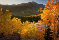 #Colorado #newhomes #foresale http://creekstone-homes.com | http://www.720media.com/