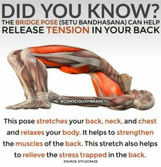 yoga bridge pose - for posture and stress release
