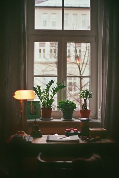 Window. Would love a window like this! Picturing the leaves fluttering or a stormy day. Watching the first snowfall...