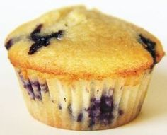 Coconut Blueberry Muffins High Protein High Fiber Low Carb