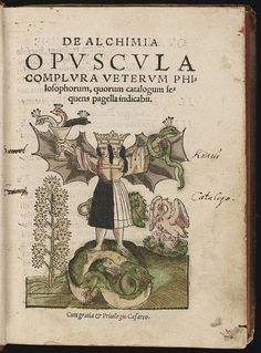"""De Alchimia opvscvla complvra vetervm philosophorum,"" book on alchemy, Cyriaci Iacobi, 1550"