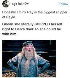 Biggest Reylo shipper definitely