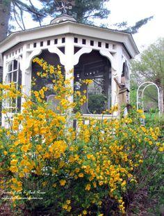 Gazebo in this beautiful garden tour eclecticallyvintage.com