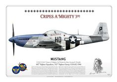 """P-51D """"Gripes a Mighty 3rd"""""""
