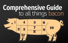 bacon-guide The Baconcyclopedia: The Ultimate Bacon Reference of Baconic Proportions Survival Food, Camping Survival, Smokehouse Bbq, Bacon Sausage, Self Reliance, Paleo Life, Cooking Ingredients, Bacon Recipes, Smoking Meat