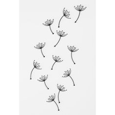 Pluff Wall Decor - Set Of 12 (€17) ❤ liked on Polyvore featuring home, home decor, wall art, backgrounds, fillers, doodles, drawings, pictures, quotes and text