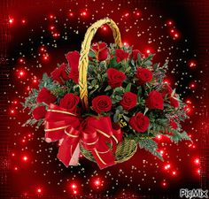 The perfect Basket Red Roses Animated GIF for your conversation. Discover and Share the best GIFs on Tenor. Roses Gif, Flowers Gif, Beautiful Bouquet Of Flowers, Beautiful Flower Arrangements, Beautiful Red Roses, Love Flowers, Gif Bonito, Beau Gif, Love You Gif