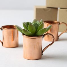 These mini copper moscow mule mugs are so stylishly cute, we bet an ear to ear grin will be plastered on your wedding guests' mugs once they see them!