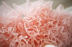 Pink tutu.