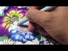 Flower Coloring Tutorial   Floribunda coloring book   colored pencil - YouTube