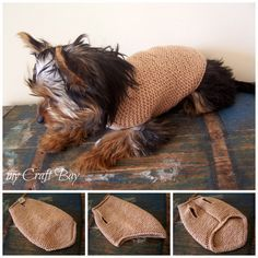 Knitted Dog Sweater (free pattern) Dog Jumpers, Sweater Knitting Patterns, Knitted Dog Sweater Pattern, Crochet Dog Sweater, Dog Pattern, Free Pattern, Small Dog Sweaters, Pet Sweaters, Knitted Bags