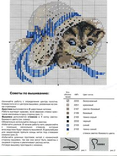 Gallery.ru / Фото #1 - Котенок - inbal1995