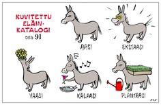 Eläinlajit 91