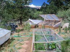 Gardening At Altitude (Colorado)