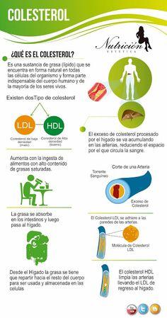 ¿Qué es el colesterol? #Salud