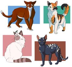 commissions 2 by ClimbToTheStars on DeviantArt Warrior Cats Series, Warrior Cats Fan Art, Cat Oc, Warrior Cat Drawings, Cat Reference, Cat Comics, Cat Character, Mythical Creatures Art, Character Design Animation