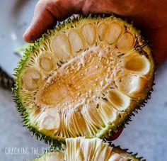 Inside of the Breadfruit #Bali #Indonesia