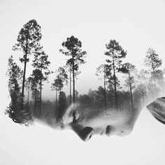 Seeds of the Future by Brandon Kidwell
