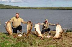 Alaska Peninsula Moose Hunts