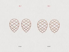 Dribbble - Pine Cone by Mike Smith