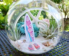 Surfboard Terrarium - Glass Globe Hanging Terrarium Kit with AirPlant ~ Home Decor ~ Beach Decor ~ Flip Flops ~ Gift Idea