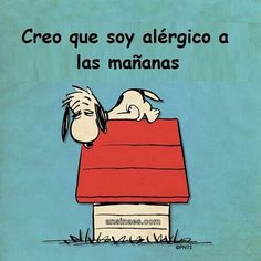 Snoopy frases - Buscar con Google | Snoopy Frases - Snoopy pharses ...