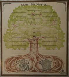 Arbre généalogique de l'Institut Drouin, 12 générations. Drouin Institute 12-generation family tree.