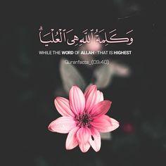 Beautiful Quran Verses, Beautiful Names Of Allah, Love In Islam, Allah Love, Quran Surah, Islam Quran, Muslim Quotes, Islamic Quotes, Arabic Quotes