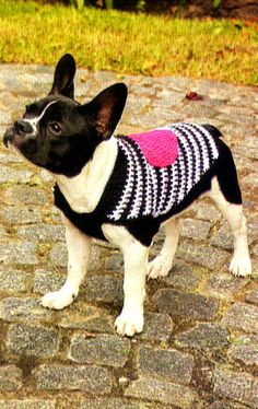 tejidos artesanales en crochet: capa chic con aplique para nuestra mascota Crochet Dog Sweater, Dog Sweater Pattern, Crochet Jacket, Art Au Crochet, Crochet For Kids, Diy Crochet, Puppy Crafts, Cat Room, Puppy Clothes