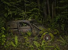 Abandoned Car. Mother nature always wins...