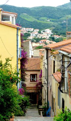 A typical vertiginous street in Banyuls-sur-Mer, a nice day-trip from Carcassonne, France.