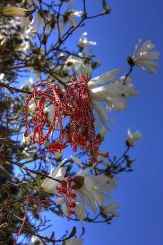 A Martenitsa Tree Baba Marta, Global Gathering, Bulgarian, Marie, Blog, Inspiration, Beautiful, Canada, Spring