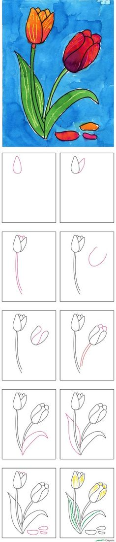 Weeks 1-6 Art Projects for Kids: How to Draw a Tulip Use for Linnaeus project?