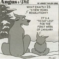 Yup! Are you making any resolutions this year? For more funnies to pin to your friends: http://www.gypsynester.com/funny-pages.htm