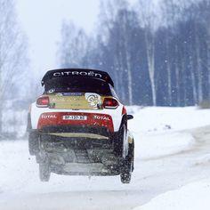 """Mi piace"": 3,902, commenti: 3 - rallye-magazin.de (@rallyemag) su Instagram: ""@abudhabiracing #flatoutovercrest #wrc #rally #sweden #rallysweden #citroen #rallycar #instarally…"""