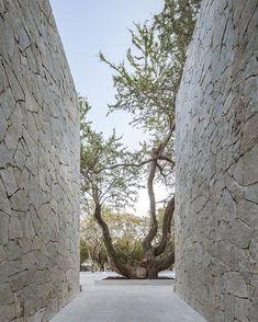 New wall stone cladding exterior Ideas Stone Cladding Exterior, Wall Exterior, Modern Exterior, Exterior Design, Landscape Architecture, Landscape Design, Architecture Design, Casa Patio, Modern Entrance