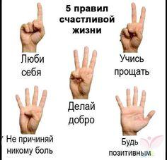 Пять правил счастливой жизни в одном фото   thePO.ST