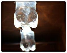 White Bottles that look like lightbulbs