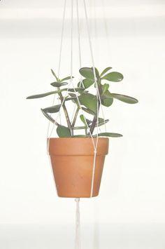 diy   hanging plant holder