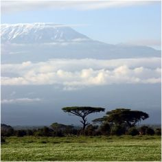 Mount Kilimanjaro, Africa. This is where I am going to be in less than 3 weeks. Holy. Crap.